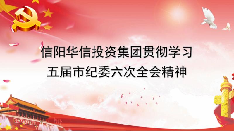 信阳华信投资集团贯彻学习五届市纪委六次全会精神